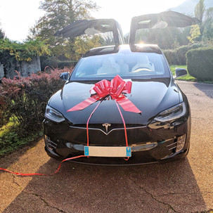 Tesla model X noeud rouge 2.jpg