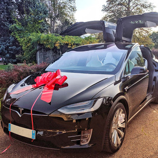 Tesla model X noeud rouge.jpg
