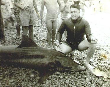 19621217_SHARK Ferril Rogers.jpg