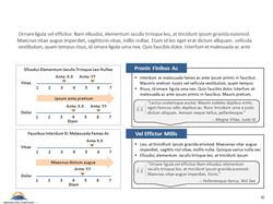 Case Study 5 - Slide 4