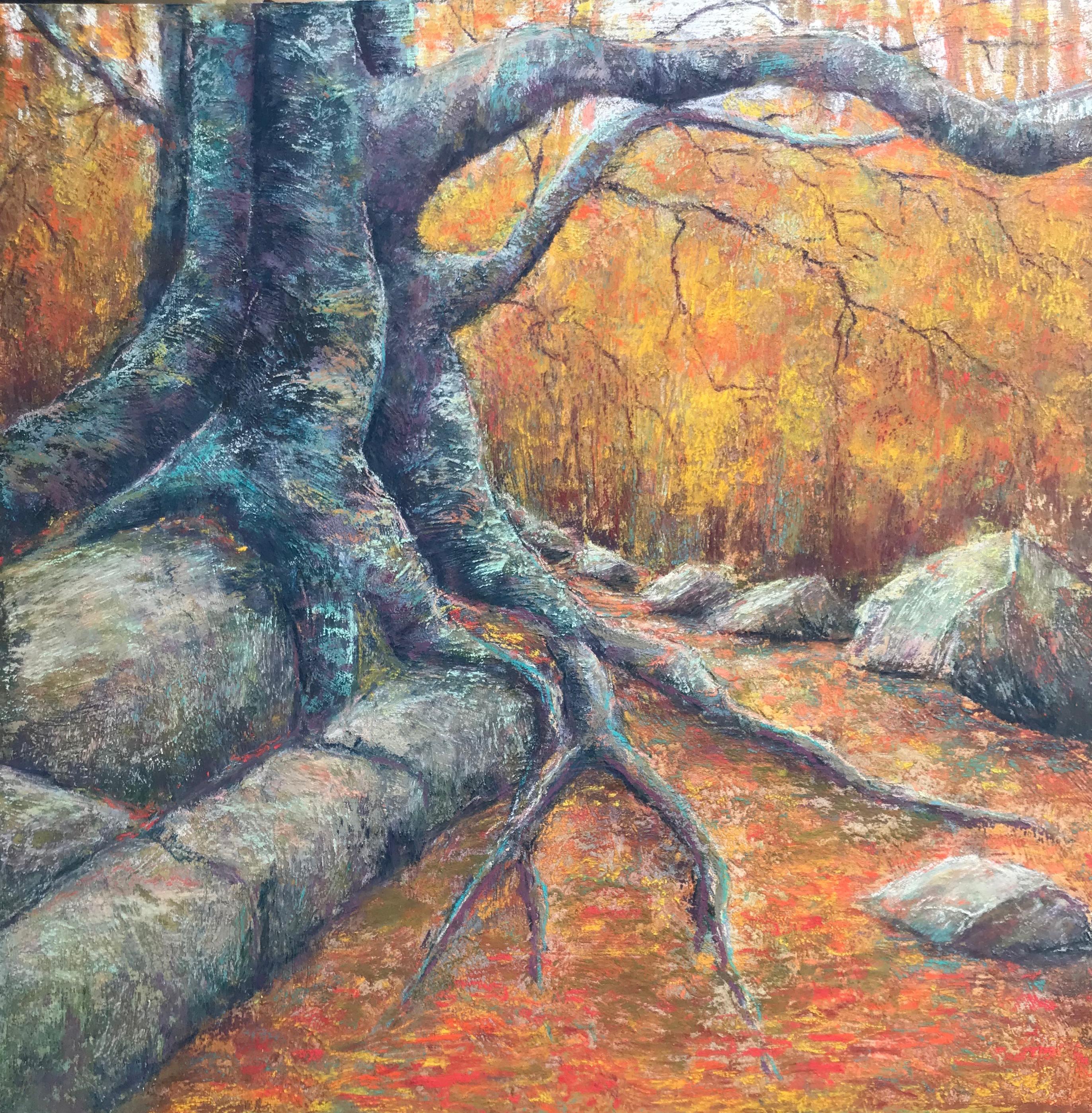 Old Dungarvin Oak