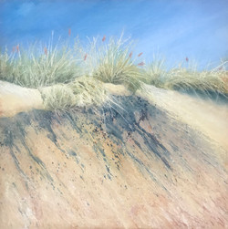 Lost amongst the sand dunes