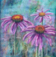 Echinacea or coneflower.jpg