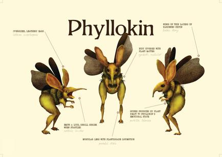Phyllokin