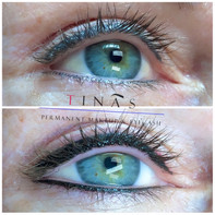 Top and Bottom Liner touch-up