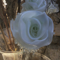 Les roses de Tanagra - décembre 2020
