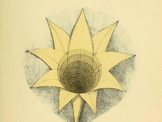 Psychologie géométrique : Benjamin Betts et la mathématique de la conscience