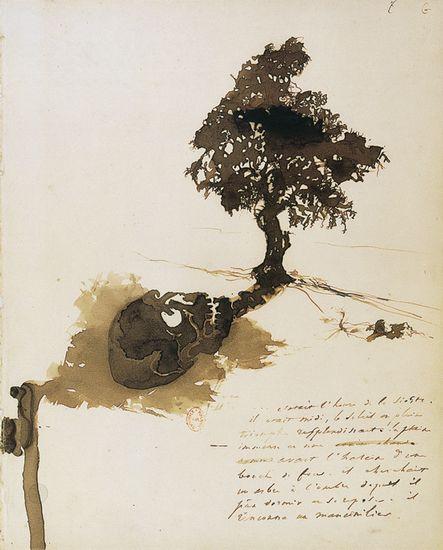 Victor Hugo, l'Ombre du mancenillier