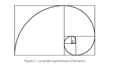 La spirale logarithmique (Fibonacci)