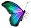 Butterfly (58)_edited_edited.png
