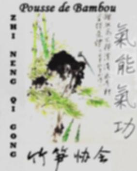 Pousse de bambou Challans 85300 QI GONG
