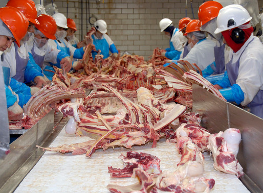 Covid-19 in slaughterhouses?