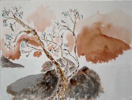 Gnarl Tree