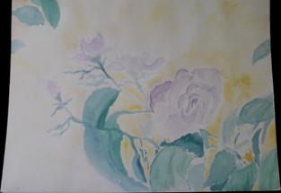 Purple Roses w/ Sun
