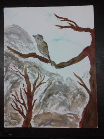 Bird & Mountains