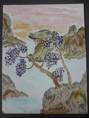 Purple Flowers Sunset