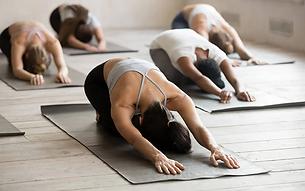 yoga image.webp