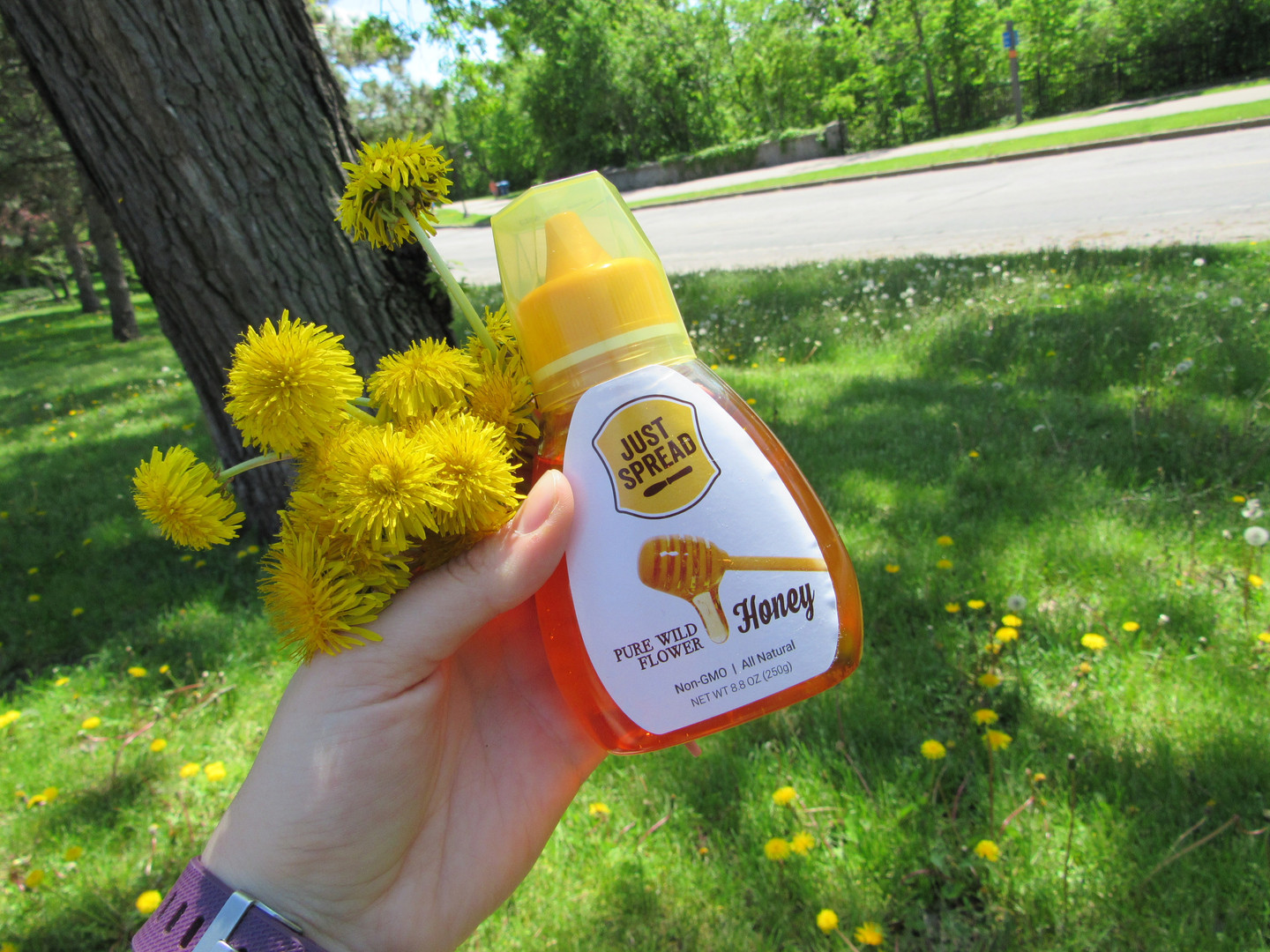Honey Flowers