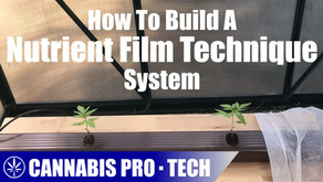 How to Build a Nutrient Film Technique System