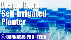 Building a Basic Self-Irrigated Planted With Water Bottles