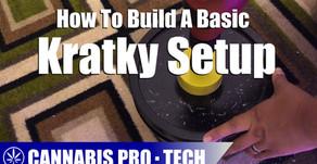 How to Build A Passive Hydroponic Kratky Setup