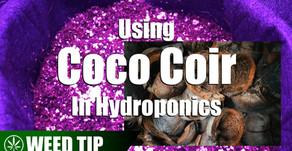 Using Coco Coir As A Hydroponic Grow Medium