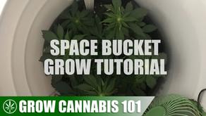 Building a Space Bucket & Indoor Grow Tutorial