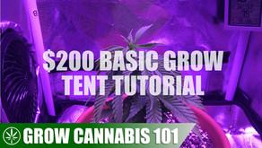 Basic Grow Tent & Indoor Grow Tutorial