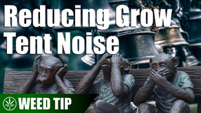 Reducing the Noise in Your Grow Tent