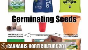 Germinating & Grow Seeds Into Seedlings