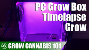 Timelapse Cannabis Grow Log in a PC Grow Box