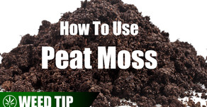 Using Peat Moss As A Hydroponic Grow Medium