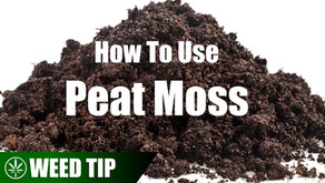 Using Peat Moss As A Hydroponic Grow Medium