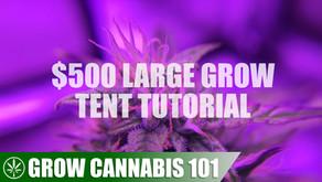 Advanced Grow Tent & Indoor Grow Tutorial