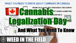 What You Need To Know About Canada's Cannabis Legalization Day