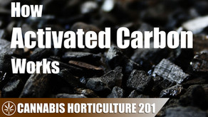 How Activated Carbon Works to Absorb the Cannabis Smell