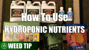 How To Use Different Hydroponic Fertilizers To Make Nutrient Rich Water