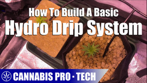 How To Build A Basic Hydroponic Drip System