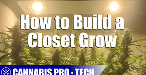 A Guide to Setting Up a Closet Grow Space