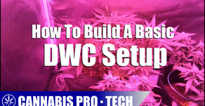 How To Build A Deep Water Culture Setup