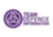 Team Defence Information Logo.png