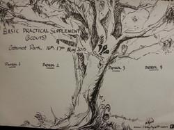 Signature Tree
