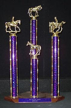 All Around Award