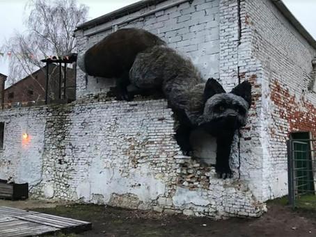 Giant Black Fox in Riga, Latvia