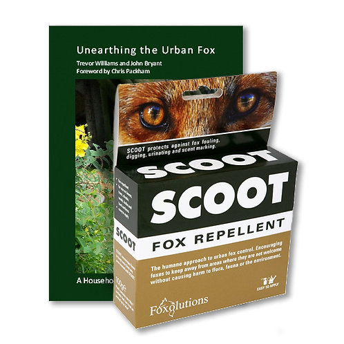 Scoot & Unearthing the Urban Fox