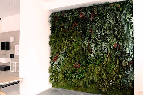 Jardines verticales en Madrid para Conce