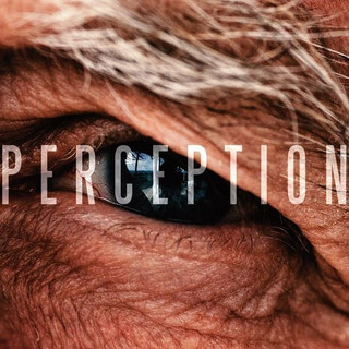'Perception' (Canada) by Bryce Mercier
