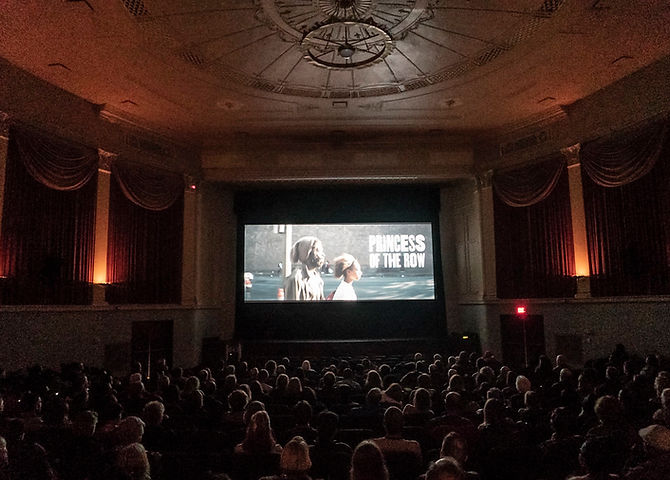 cleveland-international-best-top-film-festivals-independent.jpg