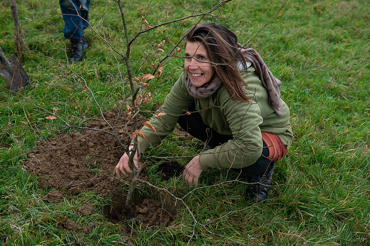 tree-plan-environmental-governance-tree-planting-ecology-marketing-eco-village-namur.jpg