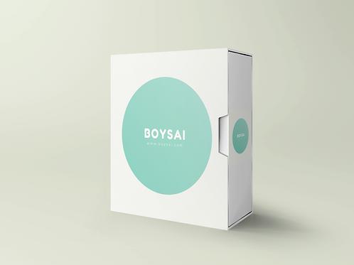 boysai.com